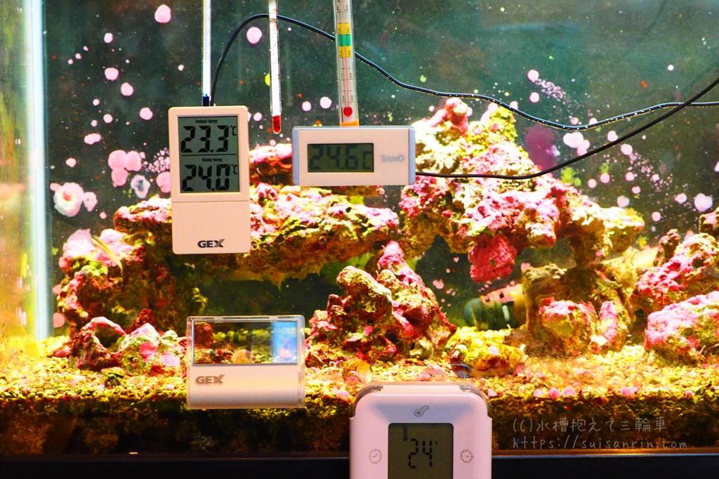 水槽水温計実験