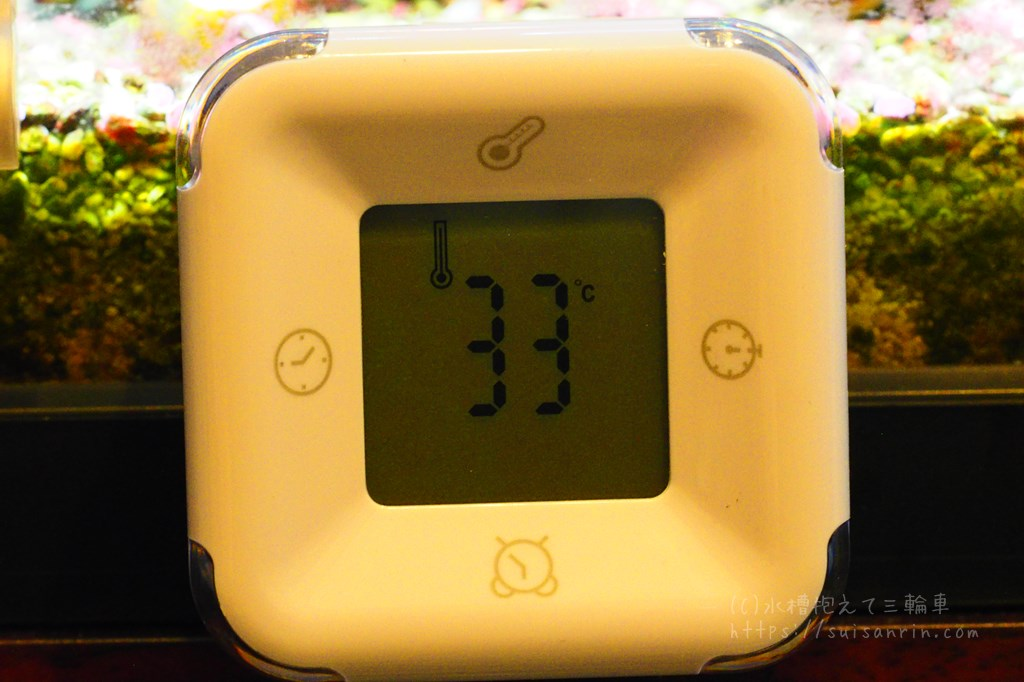 室温33℃