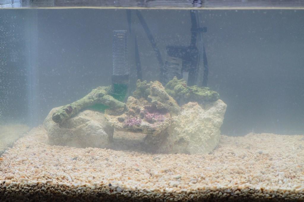 海水で底面濾過